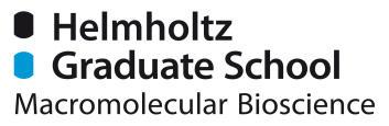 Helmholtz Graduate School for Macromolecular Bioscience