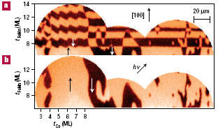 Layer-resolved magnetic domain images of a NiFe/FeMn/Co trilayer