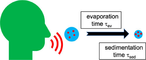 Mechanisms of airborne infection via evaporating and sedimenting droplets produced by speaking